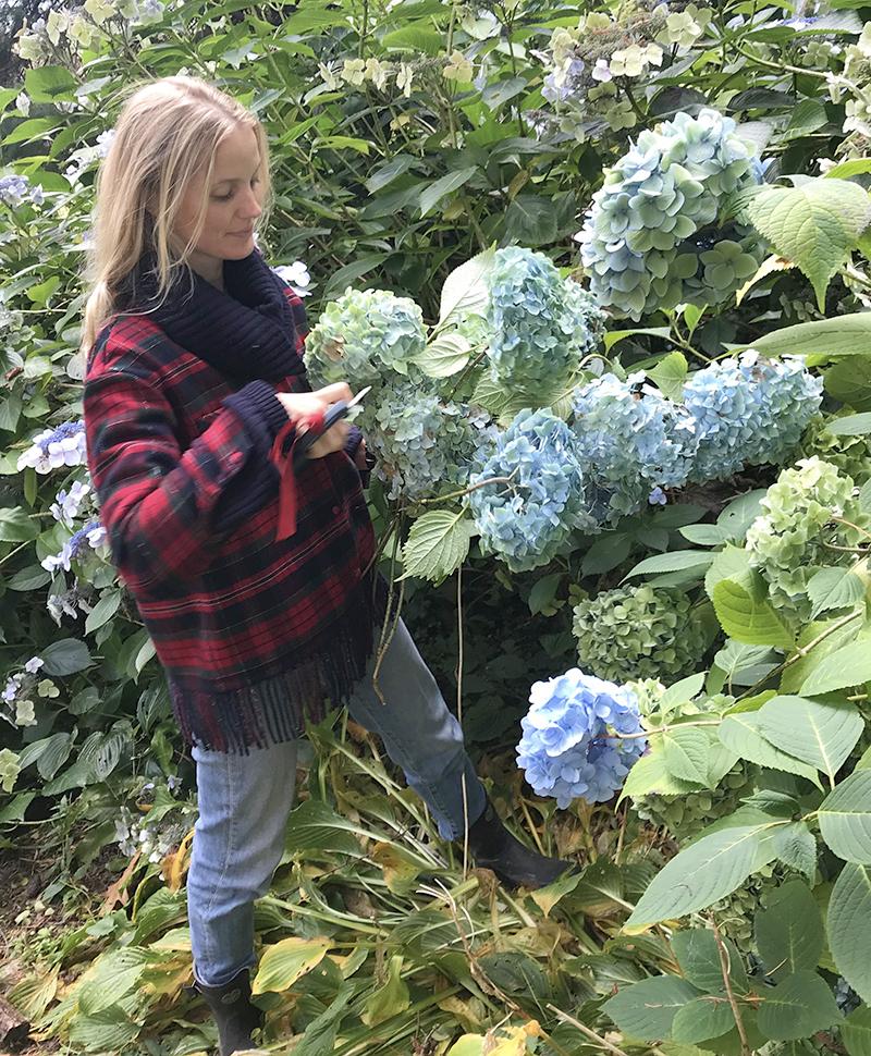 floral design tastemaker willow crossley