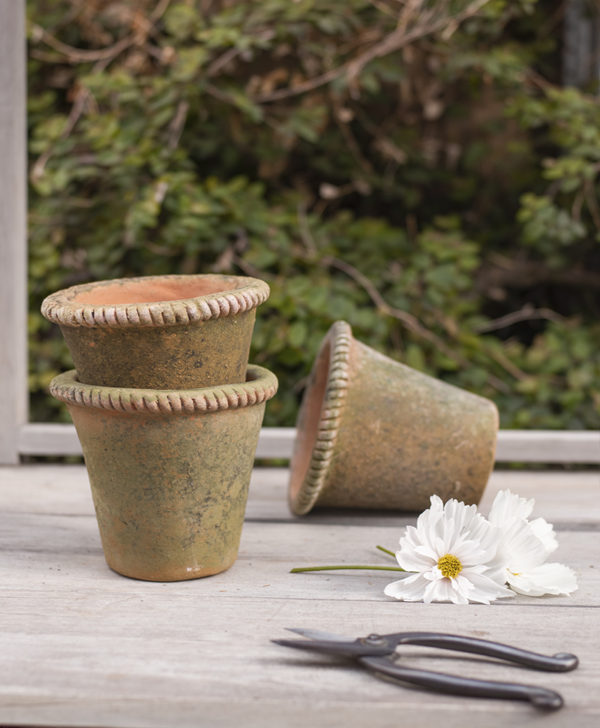 The Floral Pantry Aged Mecate Vessel