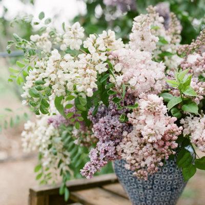 Fresh Lilac Bunches