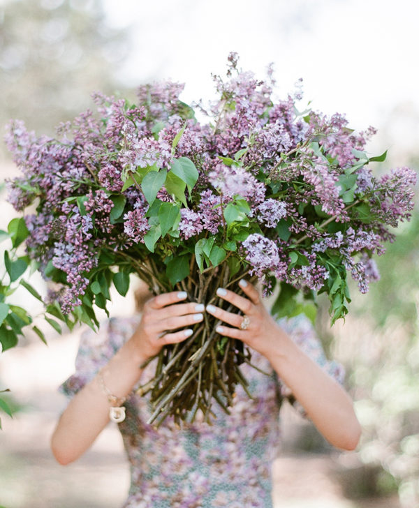 The Floral Pantry fresh lilac bunches