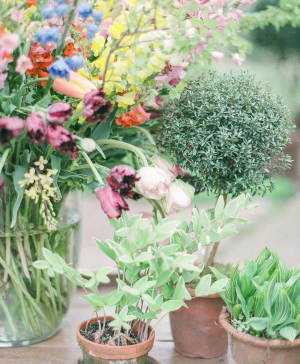 The Floral Pantry Wunderkammer floristry kit