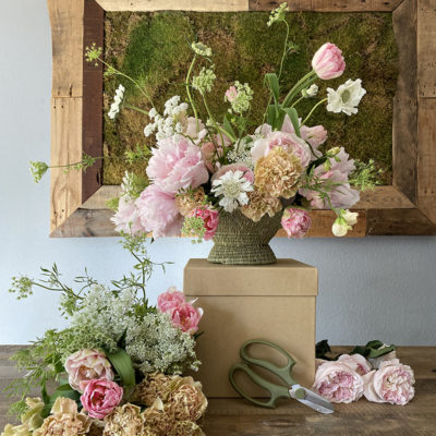 A Celebration of Flowers with Wild Bloom