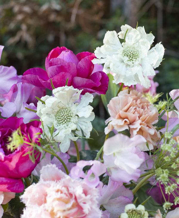 celebration of flowers with wild bloom