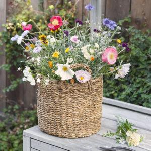 Wild bloom flower basket